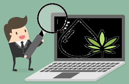 cannabis search marketing