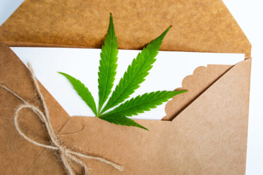 Direct Mail Cannabis Marketing